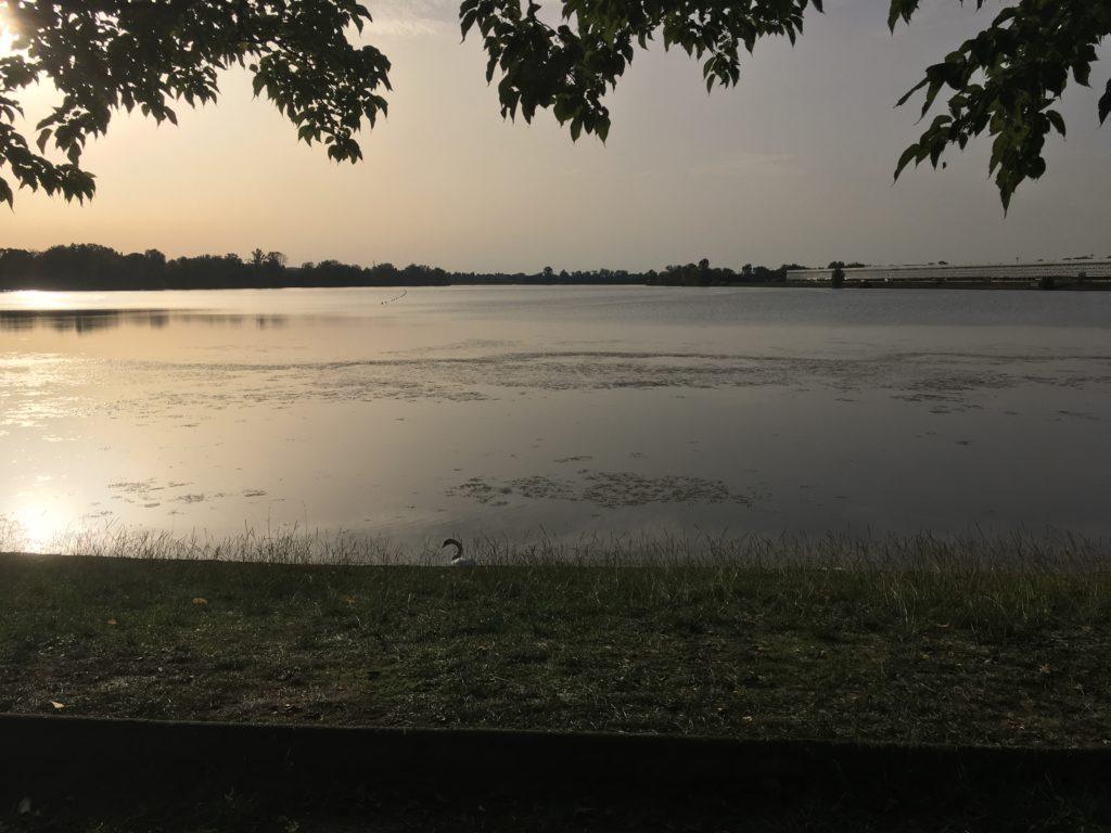 Matmut Atlantique Bordeaux lac Foot à Bordeaux girondins de Bordeaux blog voyage les p'tits touristes