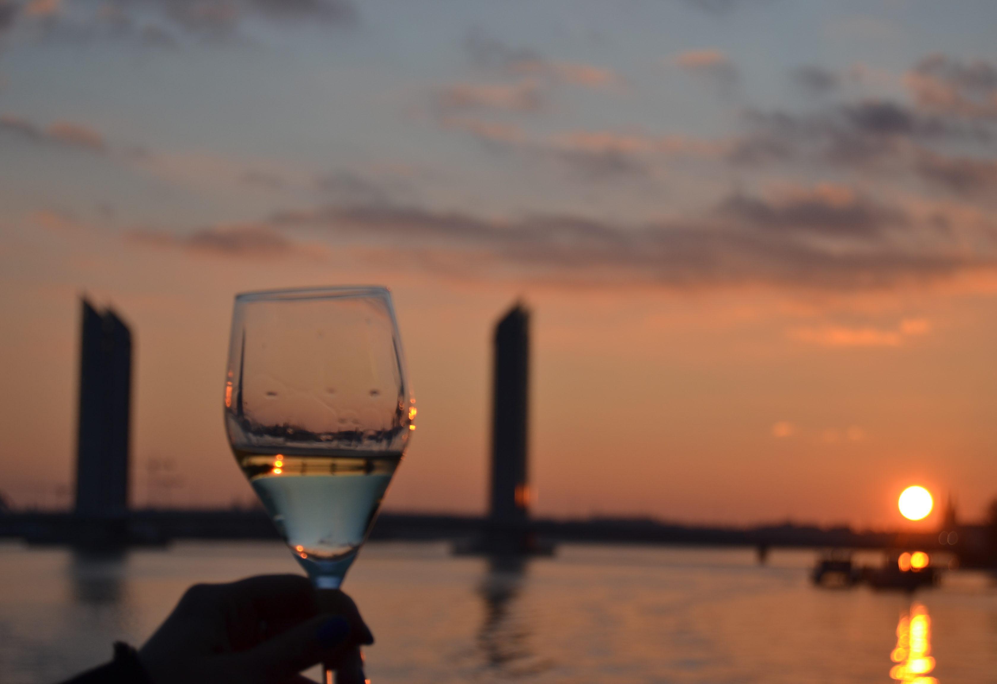 Une croisière sur la Garonne avec Bordeaux River Cruise La cité du vin Bordeaux River Cruise dégustation de vin sur la Garonne quoi faire à Bordeaux à faire à Bordeaux blog voyage les p'tits touristes - Copie