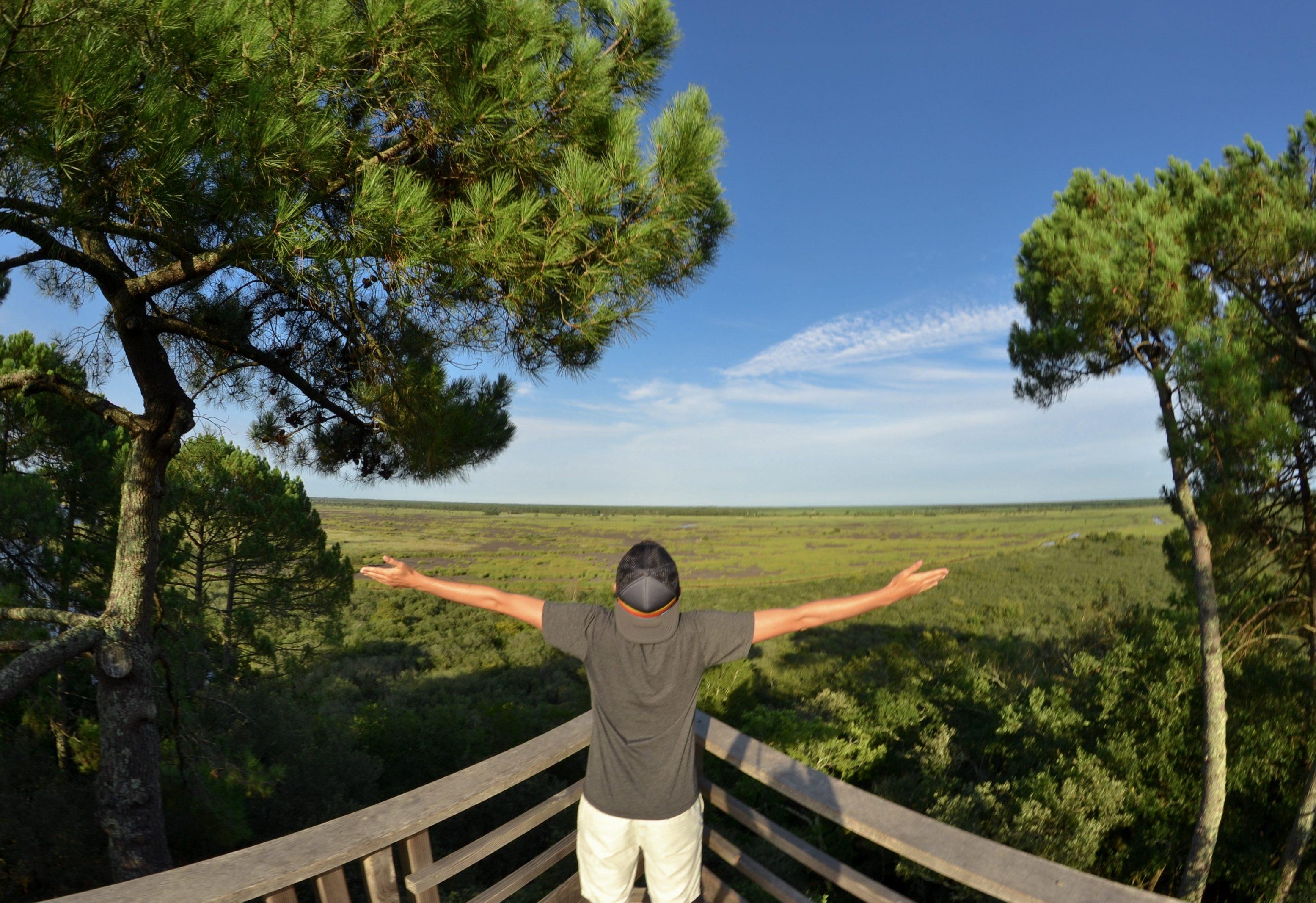 etang-de-cousseau-reserve-naturelle-etang-de-cousseau-randonnee-nature-balade-carcans-lacanau-verdure-foret-belvedere-les-ptits-touristes-blog-voyage