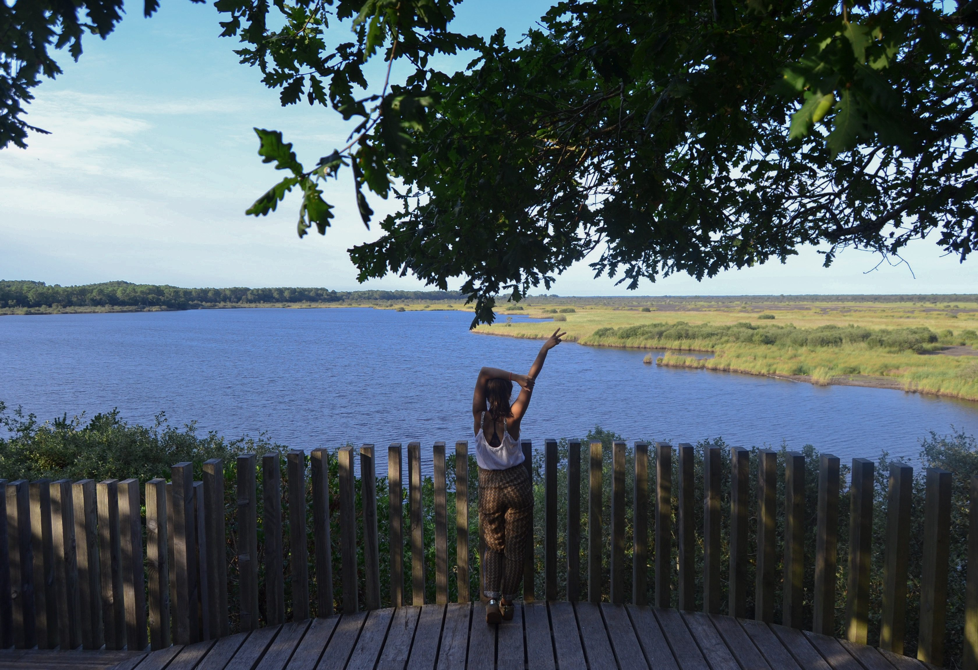 etang-de-cousseau-reserve-naturelle-etang-de-cousseau-randonnee-nature-balade-carcans-lacanau-verdure-foret-les-ptits-touristes-blog-voyage