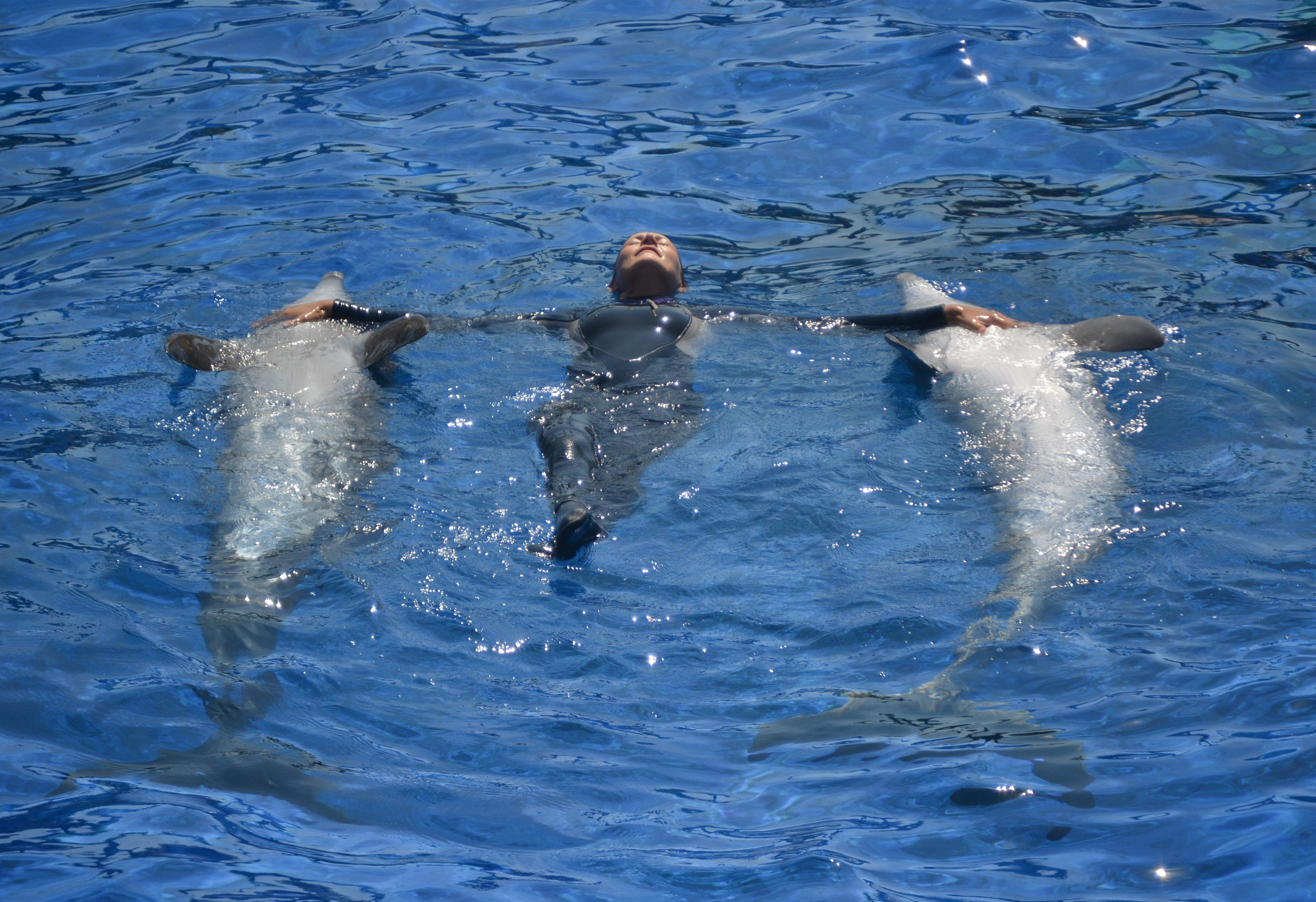marineland-antibes-une-semaine-a-nice-blog-voyage-les-ptits-touristes-3