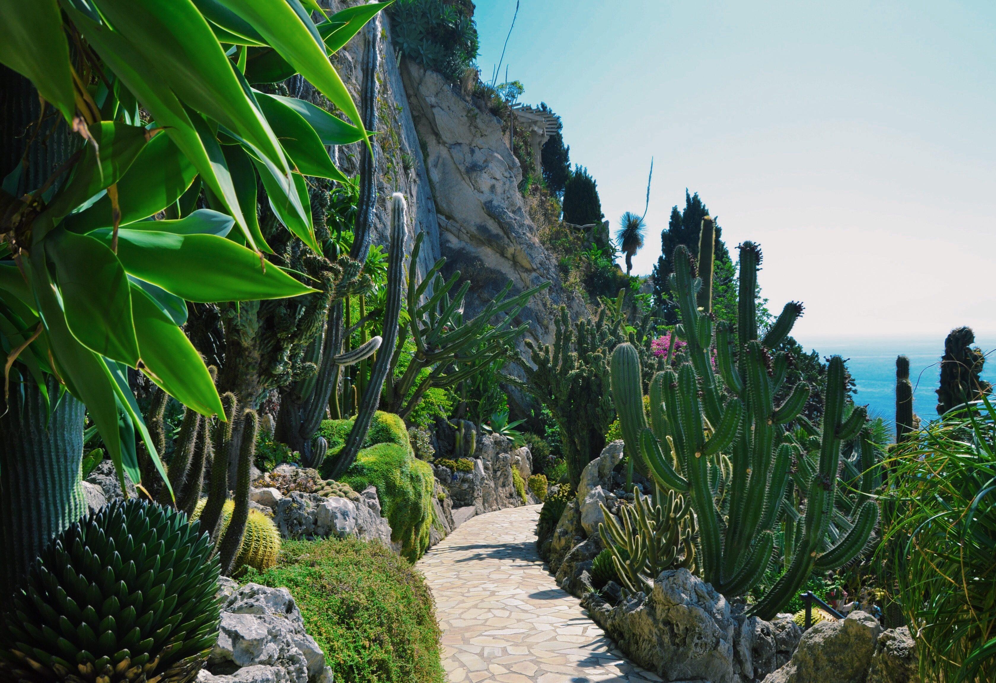 monaco-jardin-exotique-une-semaine-a-nice-blog-voyage-les-ptits-touristes