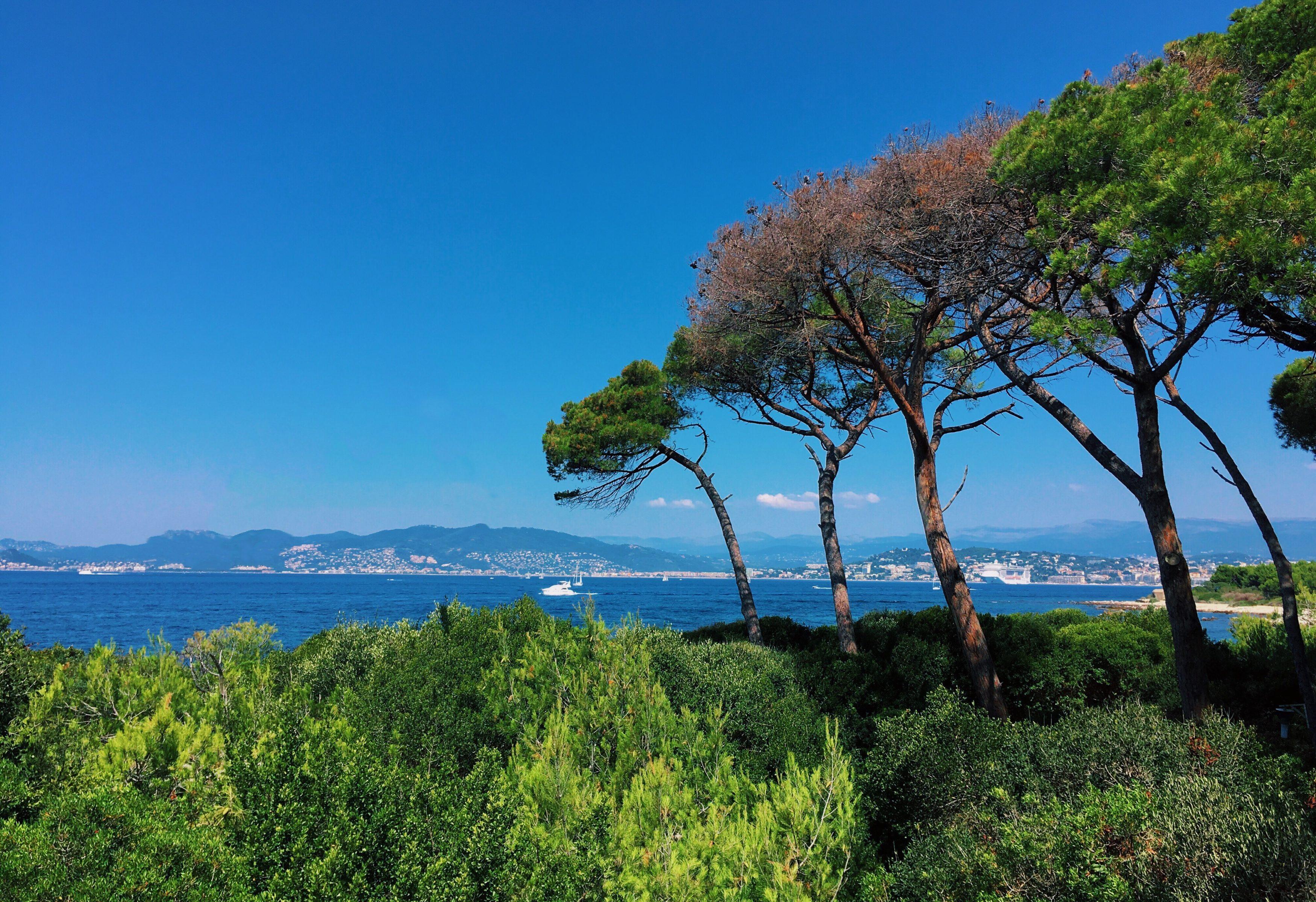 ile-sainte-marguerite-cannes-blog-voyage-les-ptits-touristes-7
