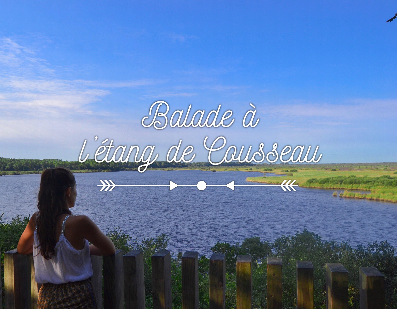 etang-de-cousseau-reserve-naturelle-etang-de-cousseau-randonnee-pins-nature-balade-carcans-lacanau-foret-vacances-couverture-les-ptits-touristes-blog-voyage